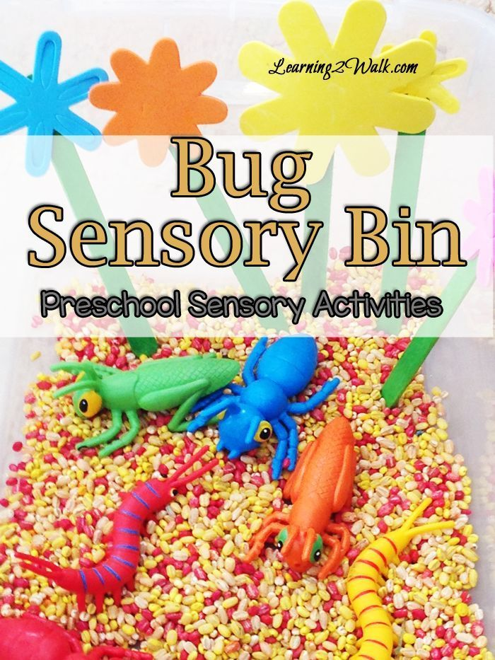 Bug Sensory Bin Preschool Sensory Activities Plays We