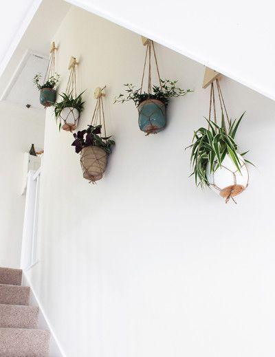Flur mit hängenden Pflanzen. Auf diese Weise machen Sie auch selbst einen urbanen Dschungel. // via Growing