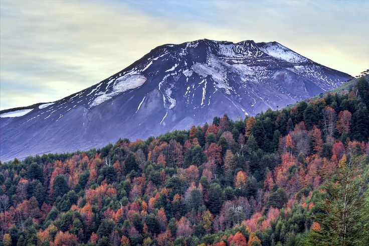 volcanes de chile lonquimay -