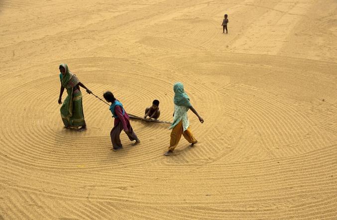 Il Bangladesh e la sua natura umana, foto di Arifur Rahman    #wisesociety.it #Bangladesh