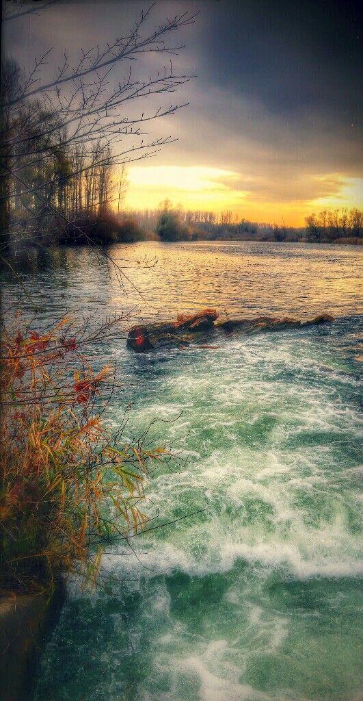 #nature #Danube #Duna #ártér