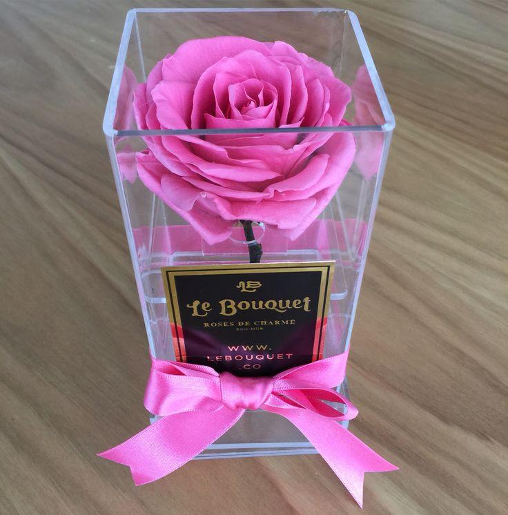 Solitario en acrílico con 1 rosa que dura 1 año Le Bouquet
