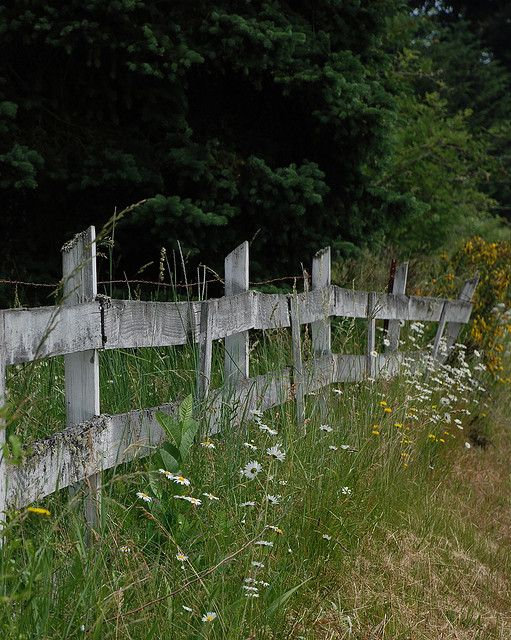 Country fence | Flickr - Photo Sharing!