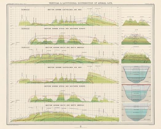 76 best planning flora fauna images on pinterest for Terraplan landscape architects