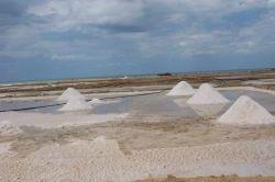 En ella te enteramos como los indigenas Wayuu idearon un sistema de explotacion de la sal marina
