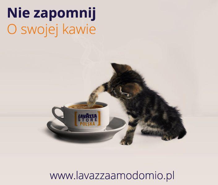 :) kawa w kapsułach Lavazza a modo mio www.lavazzaamodomio.pl