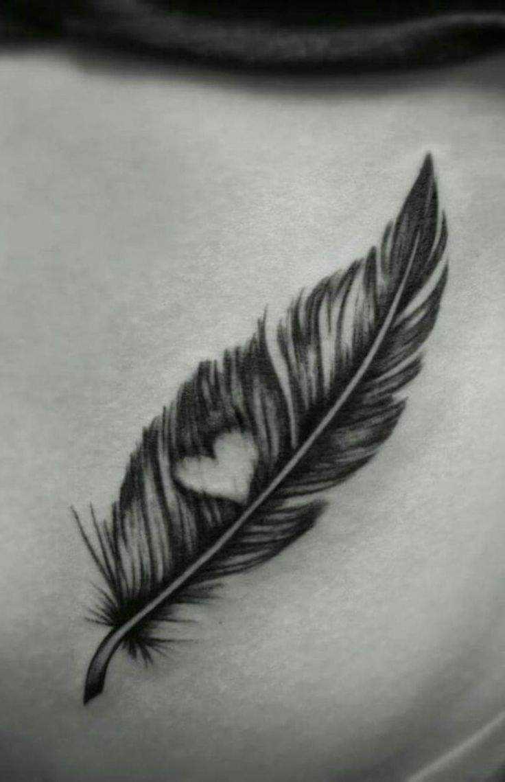 Feather tattoo – meaning and templates – # meaning #spring #tattoo #and # templates