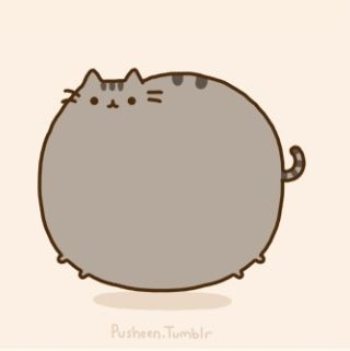 Pusheen                                                       …