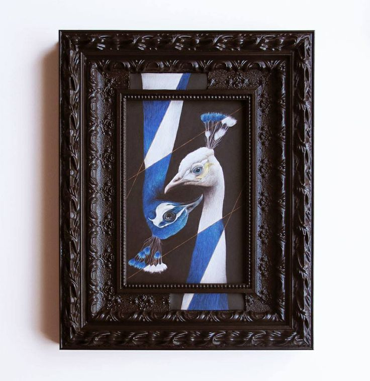 Peacocks with Segmented Pigmentation, Coloured Pencil on Paper with Frame, Acrylic & Resin, 2014