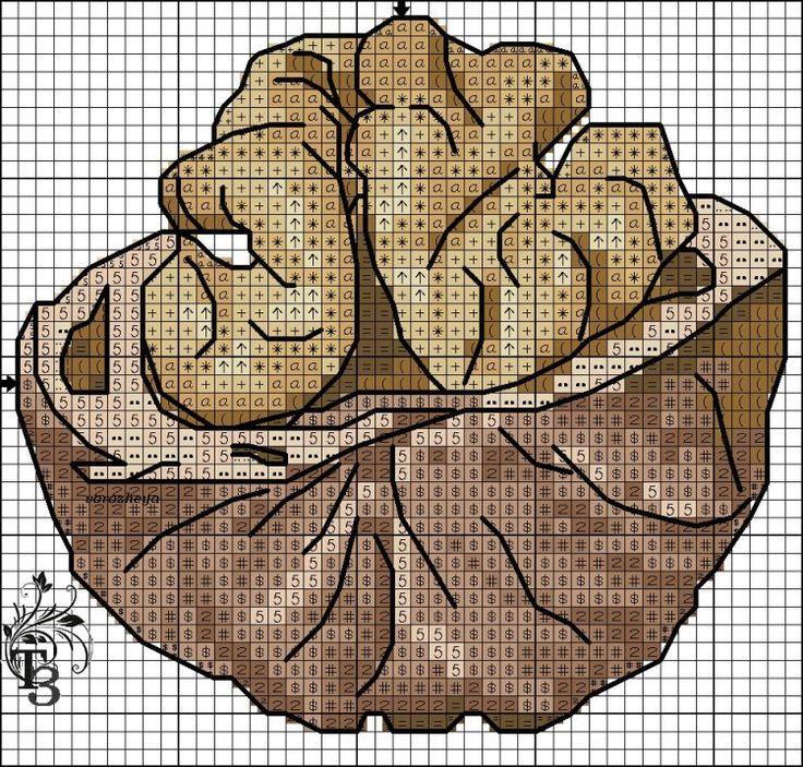 Gallery.ru / Фото #6 - шишки и орешки - EditRR / orzech włoski 1/2