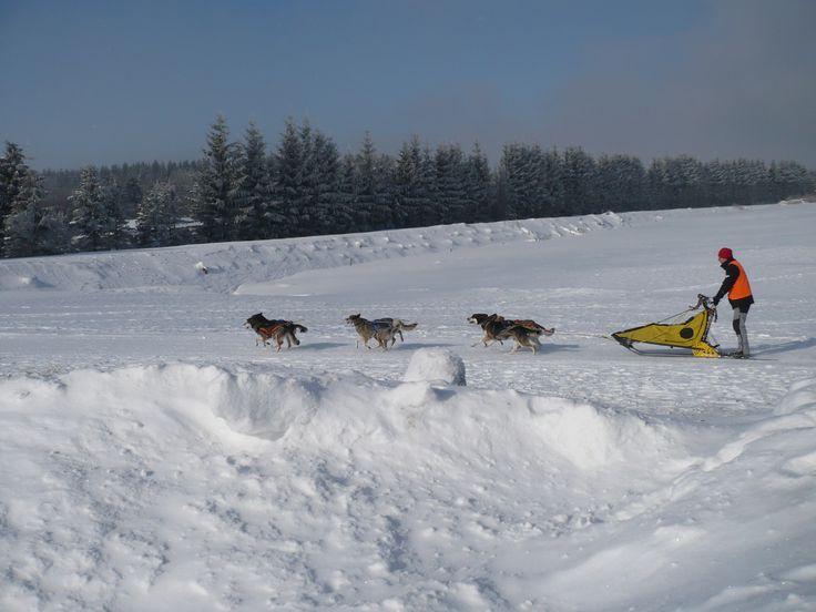 In voller Fahrt durch den Schnee...