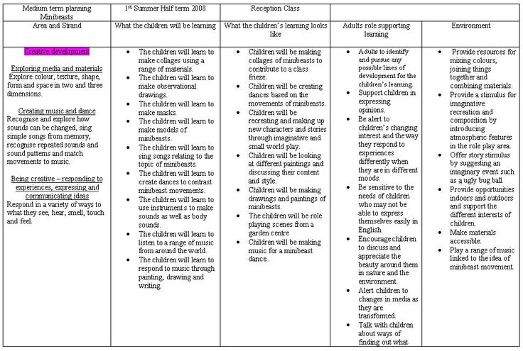 EYFS minibeast medium term plan - Comprehensive term plans.