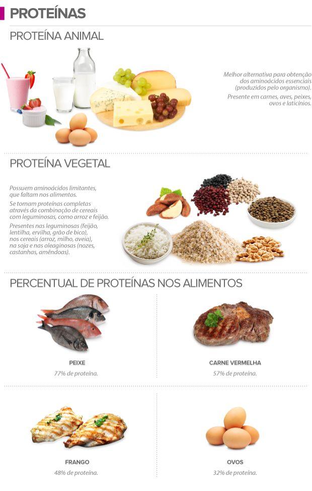 As principais fontes de proteínas em alimentos são: carnes, ovos, laticínios e leguminosas. Já as fontes de carboidratos são: pão, feijão, lentinha, farinha, arroz entre outros.