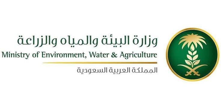 وزارة البيئة والمياه والزراعة حظر 7 منتجات لارتفاع نسبة المبيدات فيها Environment Agriculture Ministry
