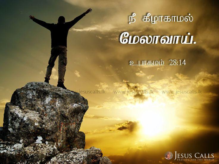 நீ கீழாகாமல் மேலாவாய். உபாகமம் 28:14