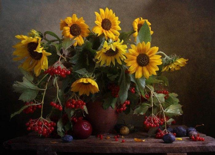 фотографии цветов -14-15