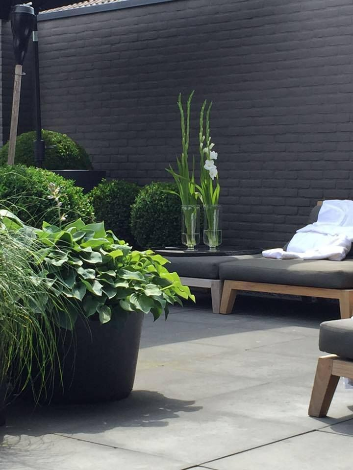 Solid colors (black) make things cohesive outdoors. Plus plants look really striking with a black backdrop.