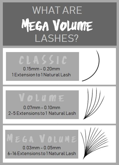 What are Mega Volume Lashes? | The Lash Professional Blog | Volume
