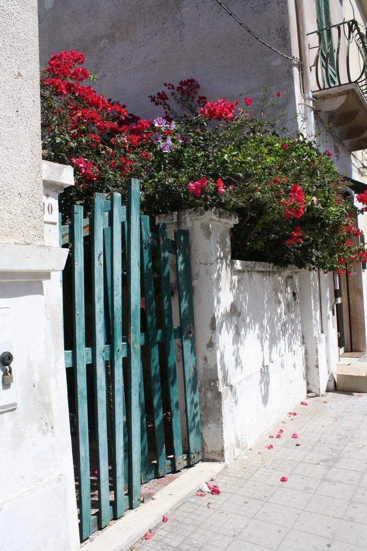Sardinia,un muretto con la calce bianca,un cancelletto di legno colorato e i fiori di contorno.