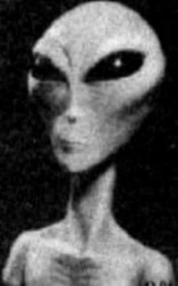 This is what a alien grey is said to look like.