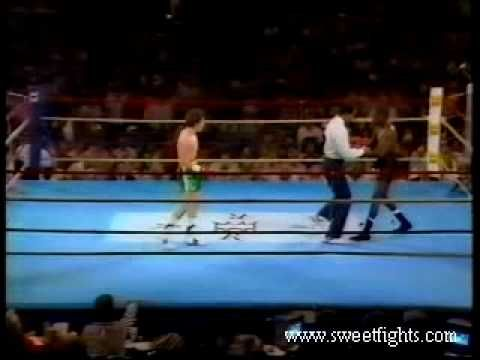 Julio Cesar Chavez vs Roger Mayweather
