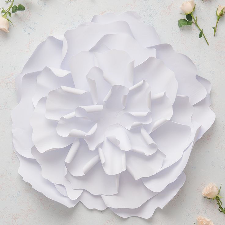 Large DIY Paper Peony Décor Flower White
