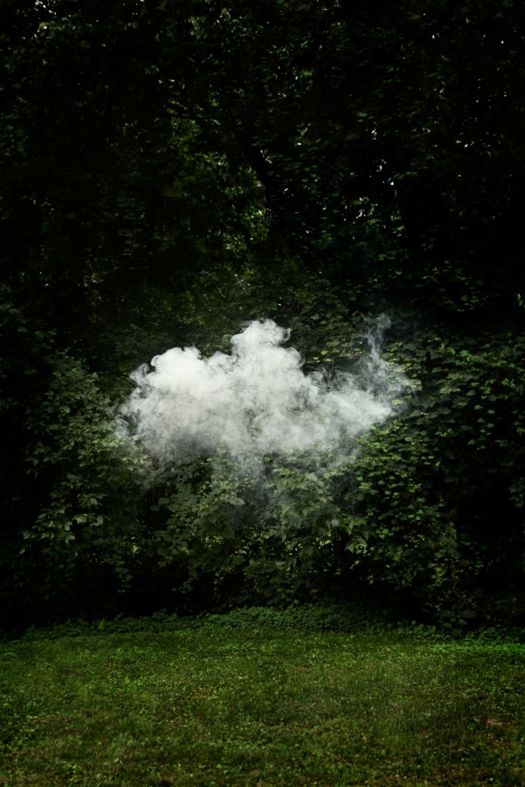 *You've never seen science expriments look quite like this*  Caption: A cloud of smoke lingers, mimicking how invisible water vapor condenses into visible water droplets to make clouds. Skinner waited for a Kentucky summer day with near-100% humidity so that the smoke would linger longer.
