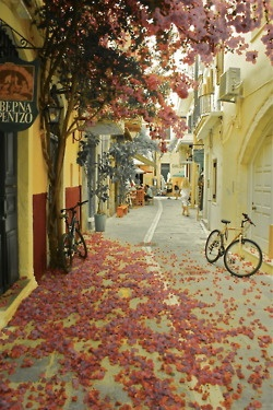 Chania, Crete ,Greece... Best place ever for markets.. want to stay here