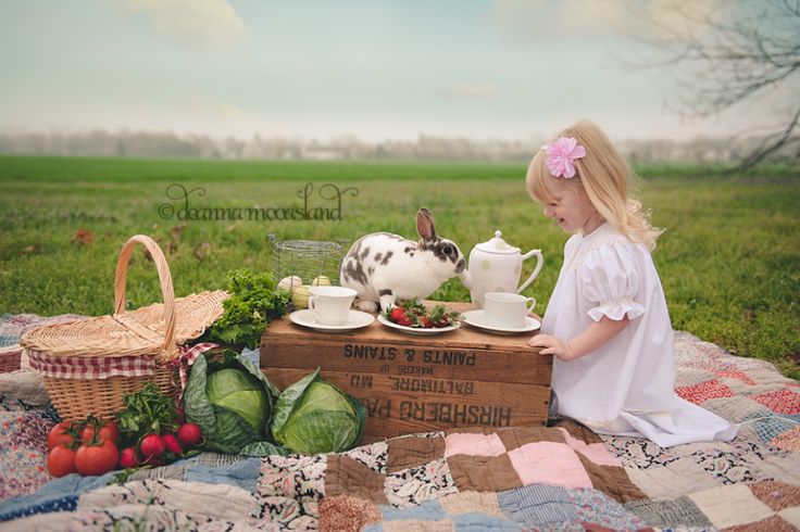 This pic has me thinking....how about a girlie picnic cake smash set up?