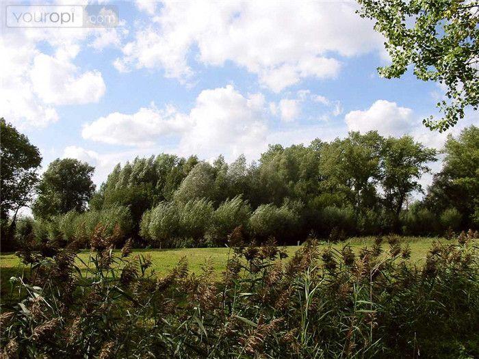 Genneper Parken Het gebied Genneper Parken is gelegen in en langs de riviertjes de Dommel en de Tongelreep, waarvan vooral de laatste haar natuurlijke karakter heeft weten te behouden en sterk meandert. Dit beekdalgebied behoort tot de ecologische hoofdstructuur.  www.genneperparken.nl