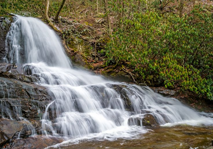 15 Best Picnic In The Smokies Images On Pinterest Picnic