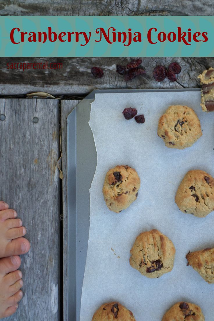 Cranberry Chickpea Cookies - gluten-free, dairy-free, egg-free, high protein, TOTALLY DELICIOUS. And extremely easy to make, too. Make some now!