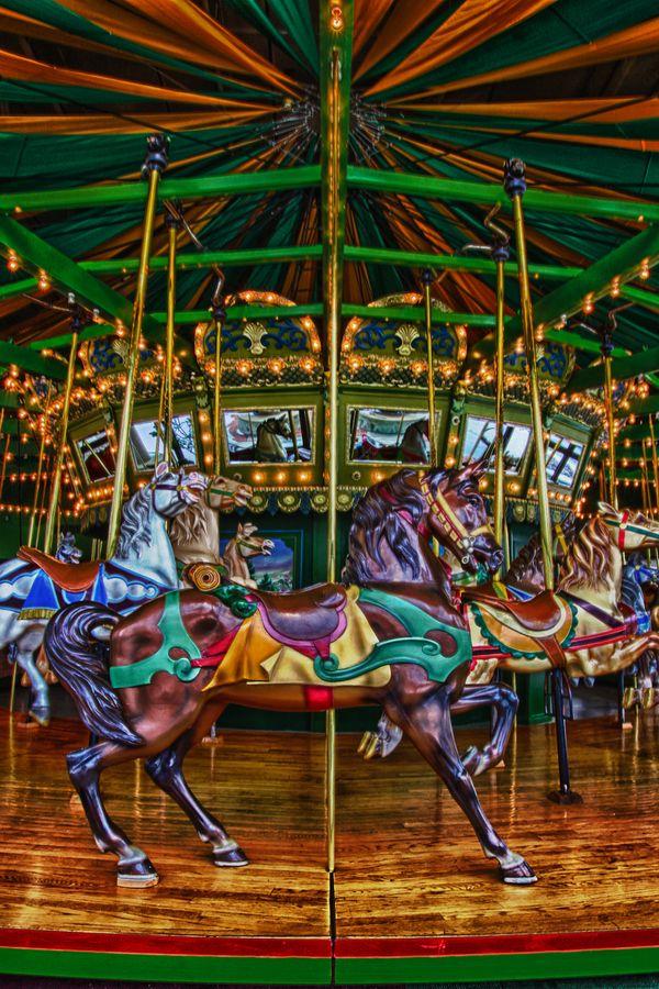 Best 25 Chesterfield Missouri Ideas On Pinterest St Louis Attractions The Butterfly Garden