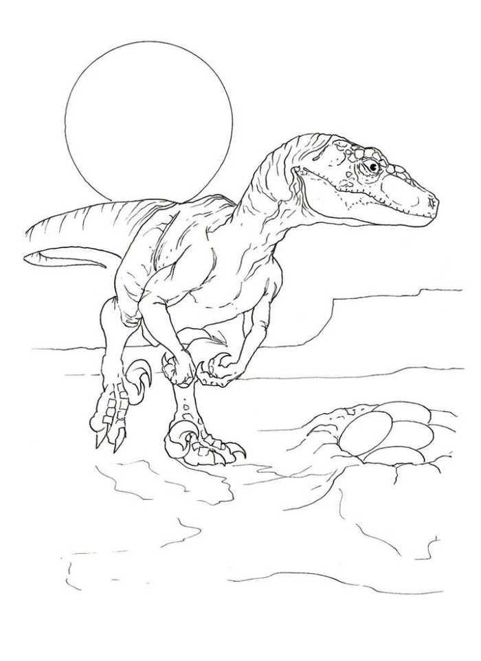 Velociraptor Eggs Dinosaur Coloring Page Dinosaur Coloring Pages Dinosaur Coloring Coloring Pages