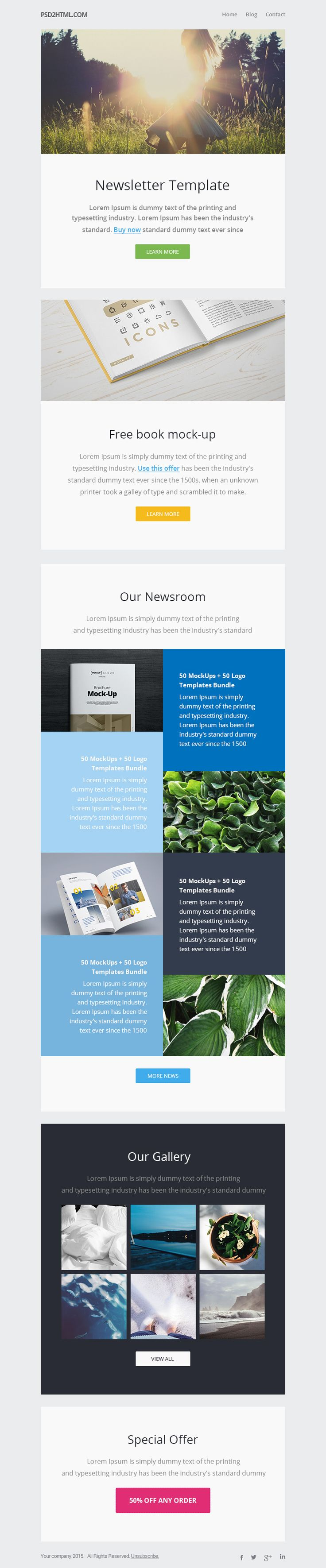 #Newsletter Email #Template