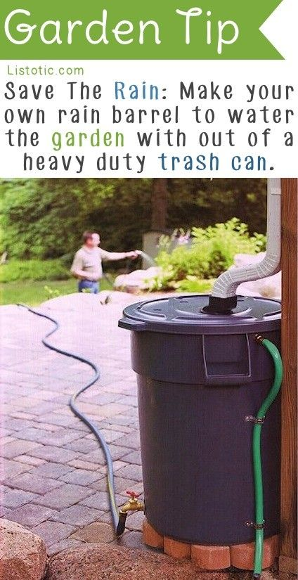 If you have rain in your region and you have rain gutters, then there is no reason not to collect that run-off water and use it to your advantage. These are the plans that will execute this project: source Set this up and when it stops raining you will be happy to know that you …