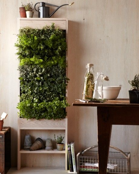 Free Standing Vertical GardenGardens Ideas, Indoor Herbs, Urban Gardens, Gardens Wall, Vertical Gardens, Vertical Herbs Gardens, Veggies Gardens, Stands Vertical, Free Stands