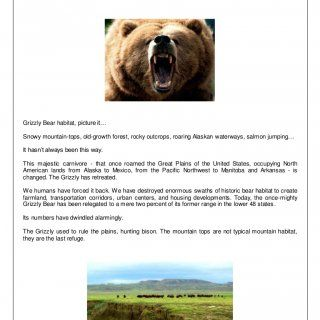 Episode BEAR Grizzly Bear habitat, picture it… Snowy mountain-tops, old-growth forest, rocky outcrops, roaring Alaskan waterways, salmon jumping… It hasn't. http://slidehot.com/resources/living-dangerously-bear-v2.42307/