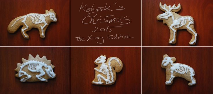 My Christmas 2015 - The X-Ray Edition gingerbread icing by Kölyök (Animal skeletons)