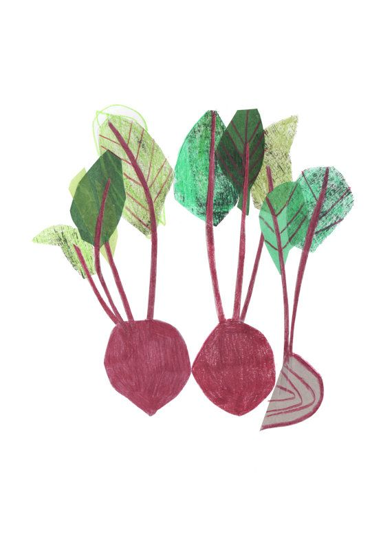 Beetroot art print Limited edition by CloverRobin on Etsy