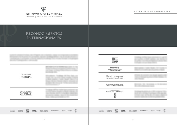 Layout for DPDC Lawyers' dossier.