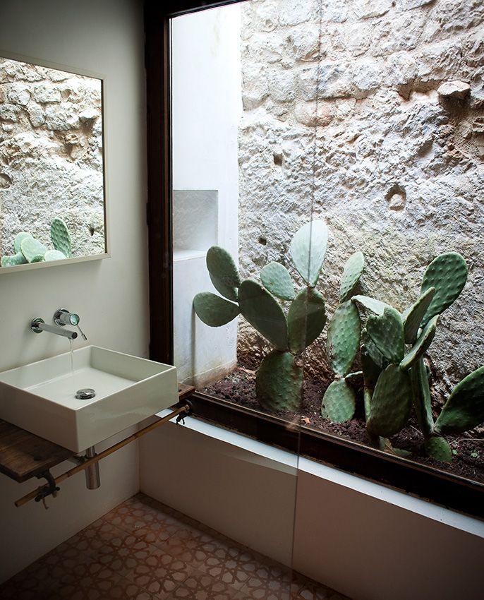 Bathroom cactus environment.