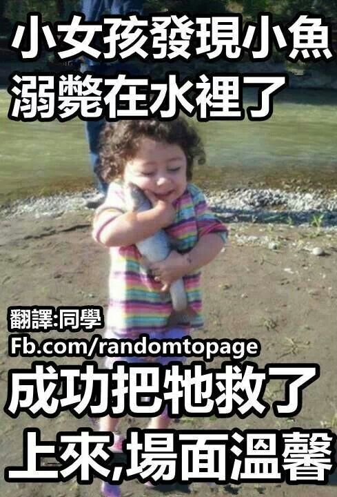 Chinese meme: a girl saves a fish from drowning