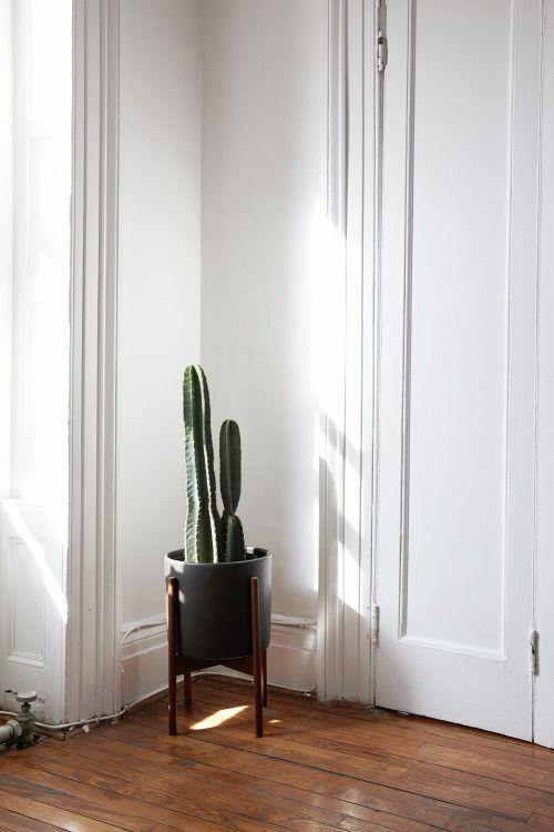 8 best MACETAS (POTS) images on Pinterest Cigarette holder - pflanzen für wohnzimmer