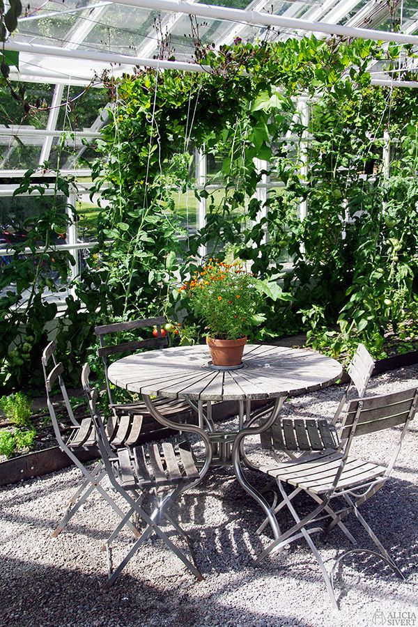 Greenhouse of Rosendals trädgård, Djurgården, Stockholm. Photo by Alicia Sivertsson.