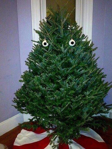 Ёлку нарядили, ждем Деда Мороза!