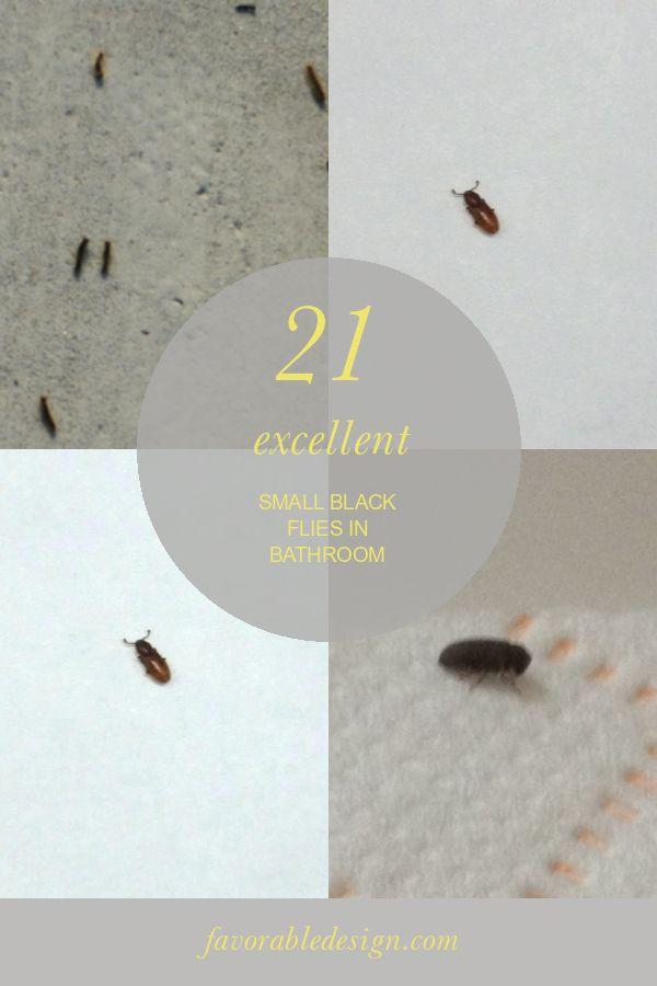 21 Excellent Small Black Flies In Bathroom In 2020 Black Fly Cute Bedroom Ideas Small Room Bedroom