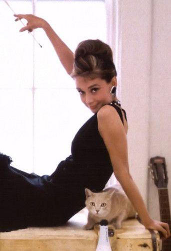 Audrey Hepburn... and cat