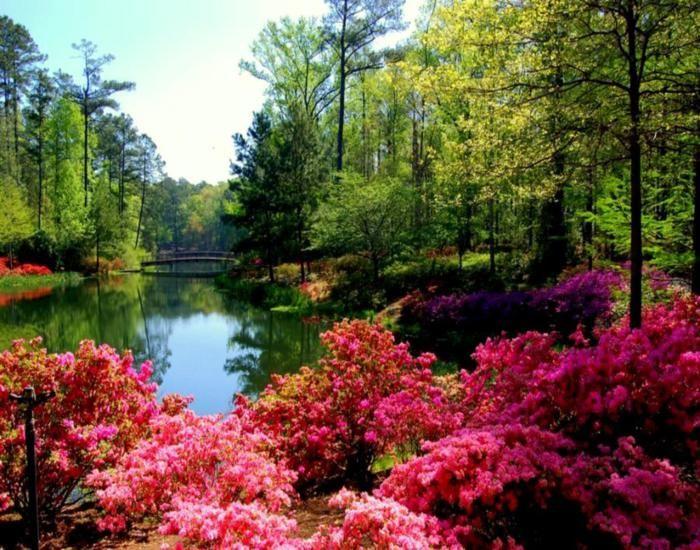 Calloway Gardens, Georgia