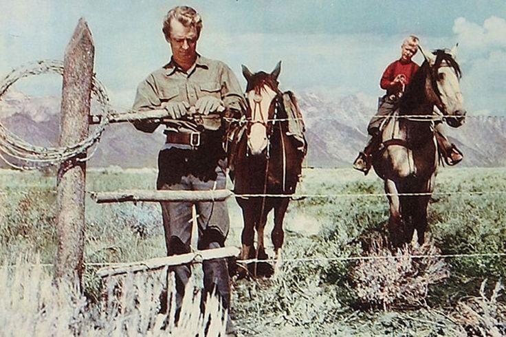 Alan Ladd western stills | wilde alan ladd jeździec znikąd 1953 van heflin alan ladd